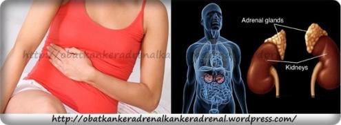 obat kanker adrenal